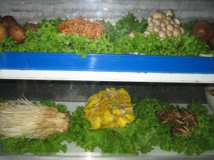 Assorted mushrooms in Yunnan.